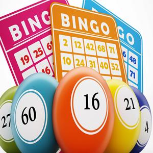 online olarak bingo nasıl oynanır ?